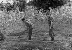 NEWZAD Engineers Clearing Land Mines