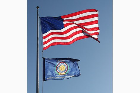 Vietnam Veterans Day Flags