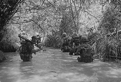 Marines Patrol Up a Stream near Dong Ha