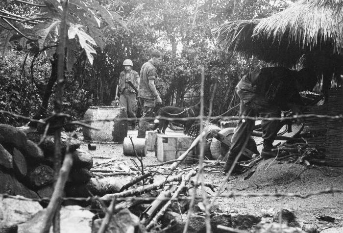 Marines of the 26th Marine Regiment search a villageon the Batangan Peninsula for signs of the Viet Cong, January 1969.